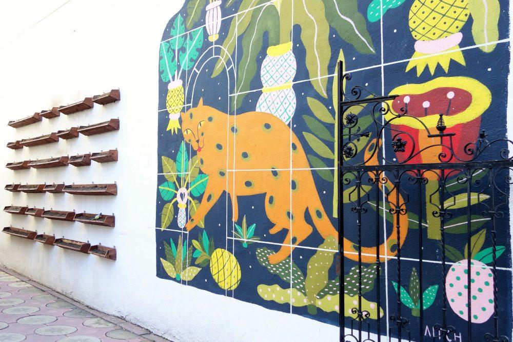 De acasă direct în Lente, sufrageria cu graffiti din oraș