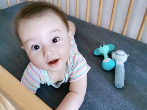 6 Luni de bebeluș. Așteptări. Realizări. Speranțe. Planuri 0